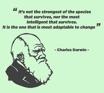 Agile marketing – de digitale Darwin 'adapt or die'